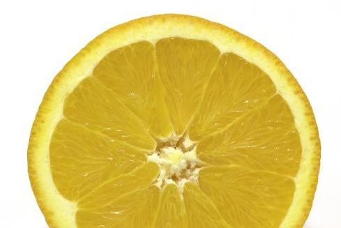 orange-214873_640