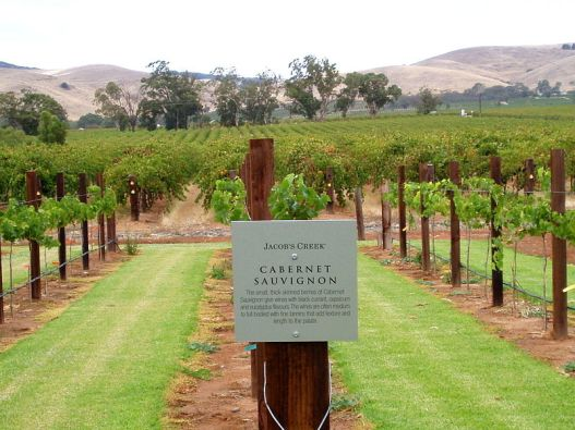 800px-Jacob's_Creek._Cabernet_Sauvignon._Barossa_Valley_SA