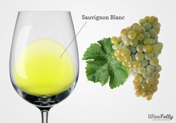 sauvignon-blanc-uva