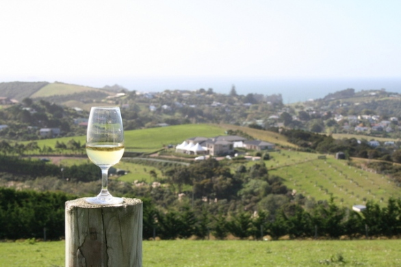 white-wine-with-a-view-1322142-639x426