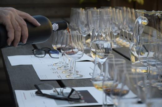 wine-tasting-1324261_960_720