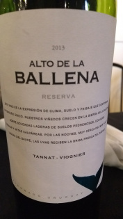 joana vinho 13