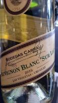 joana vinho 8