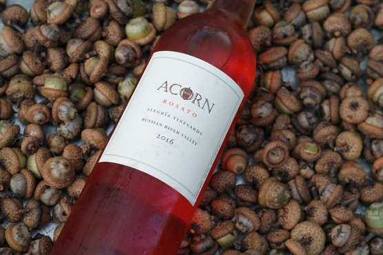 acorn-2655580_640