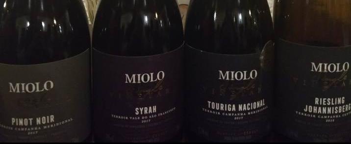 206bd1be640 Miolo Encanta em Lançamento de Sua Linha Single Vineyard
